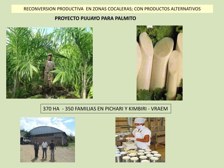 RECONVERSION PRODUCTIVA  EN ZONAS COCALERAS; CON PRODUCTOS