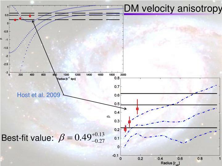 DM velocity anisotropy