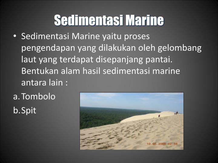Sedimentasi Marine