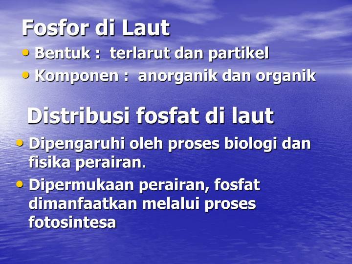 Fosfor di Laut