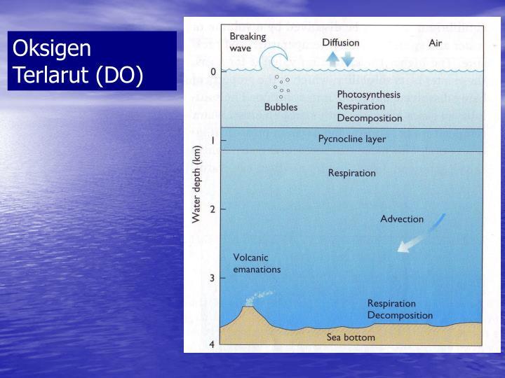 Oksigen Terlarut (DO)