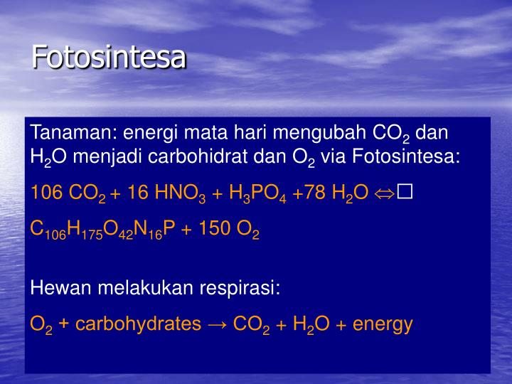 Fotosintesa