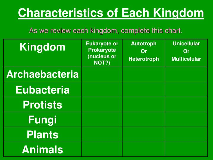 Characteristics of Each Kingdom