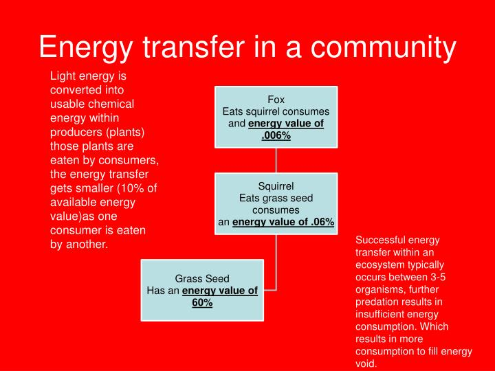 Energy transfer in a community