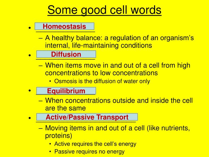 Some good cell words
