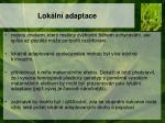 lok ln adaptace1