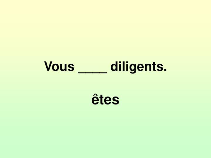 Vous ____ diligents.
