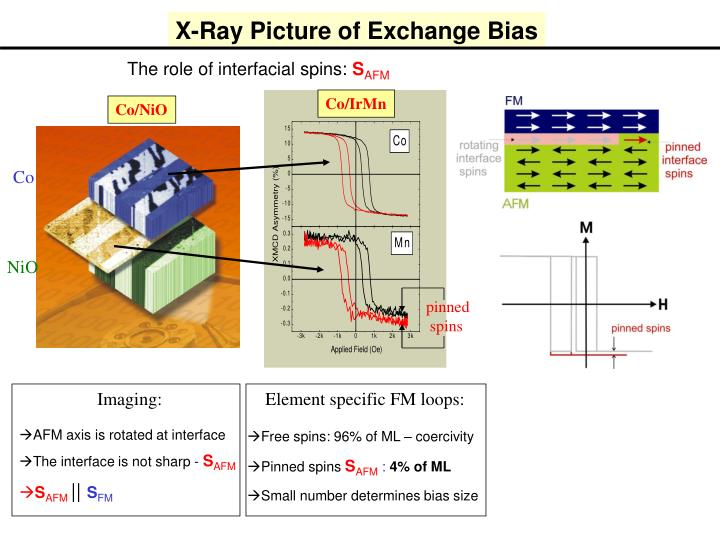 X-Ray Picture of Exchange Bias