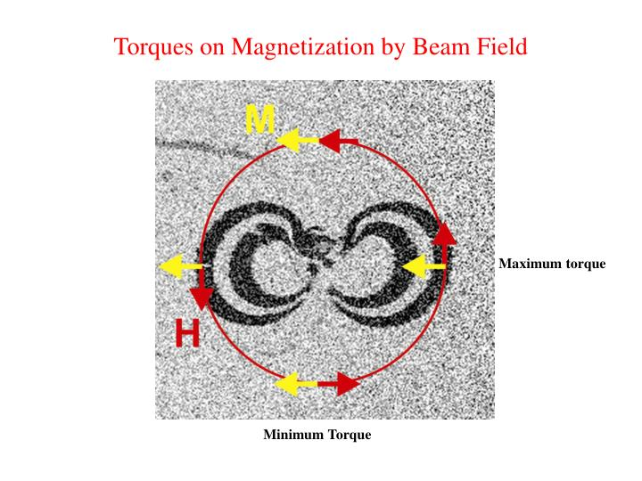Torques on Magnetization by Beam Field