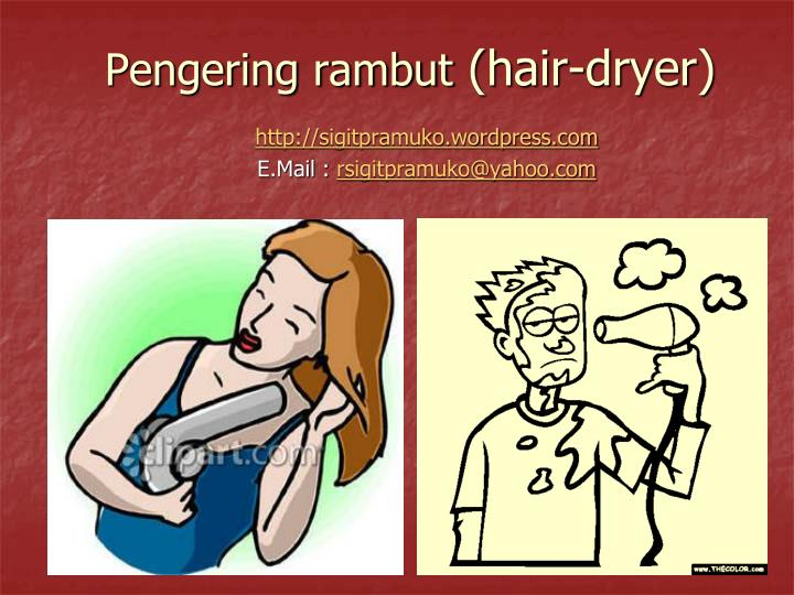 Pengering rambut hair dryer