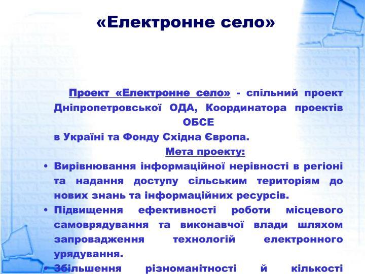 «Електронне село»