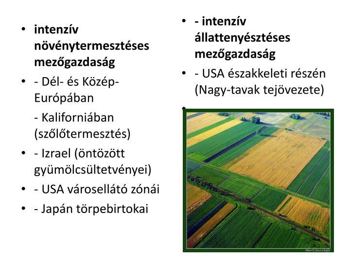 intenzív növénytermesztéses mezőgazdaság