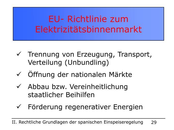 EU- Richtlinie zum Elektrizitätsbinnenmarkt