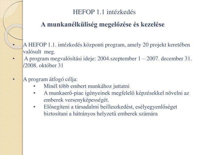 HEFOP 1.1 intézkedés