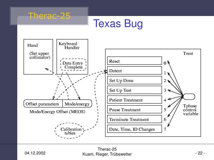 Texas Bug