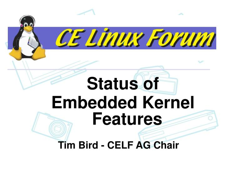Status of embedded kernel features