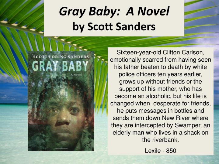Gray Baby:  A Novel
