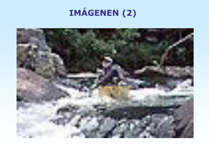 IMÁGENEN (2)