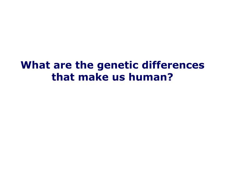 What are the genetic differences that make us human?