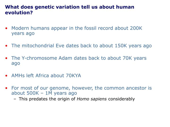What does genetic variation tell us about human evolution?