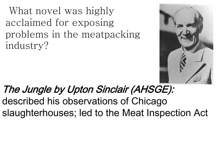 What novel was highly acclaimed for exposing problems in the meatpacking industry?
