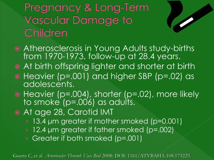 Pregnancy & Long-Term Vascular Damage to Children