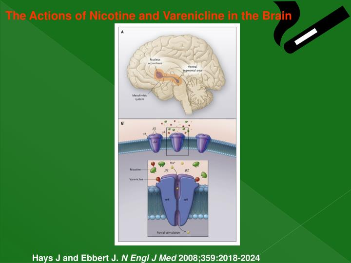 The Actions of Nicotine and Varenicline in the Brain