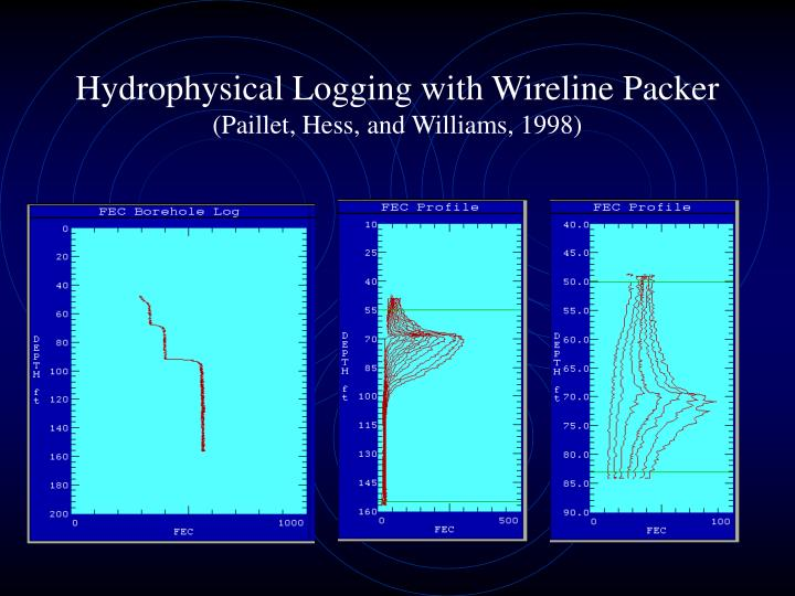 Hydrophysical Logging with Wireline Packer