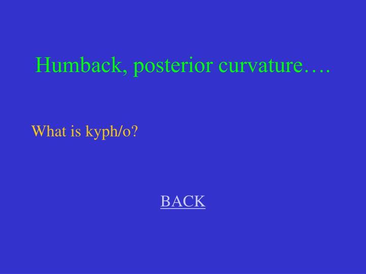 Humback, posterior curvature….