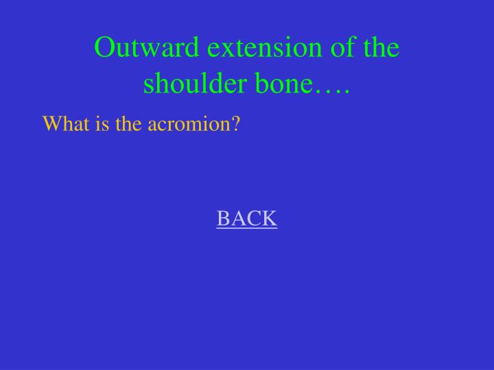 Outward extension of the shoulder bone….