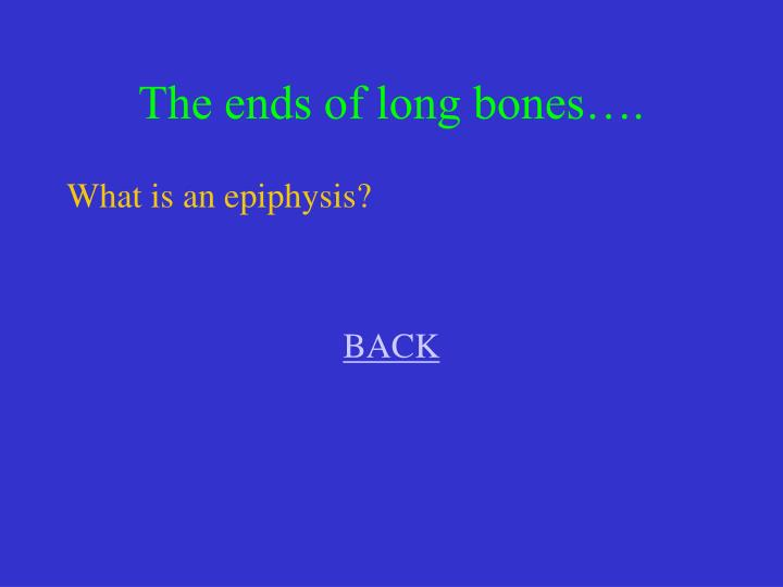 The ends of long bones….