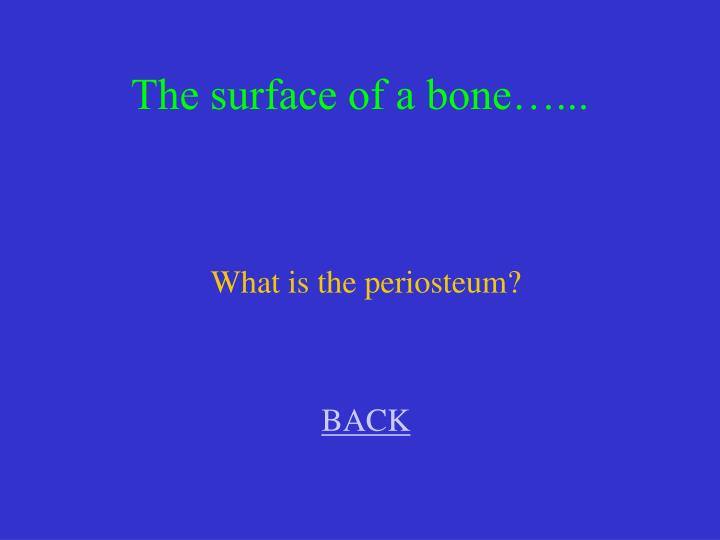 The surface of a bone…...