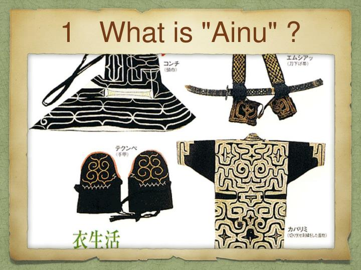 1 what is ainu