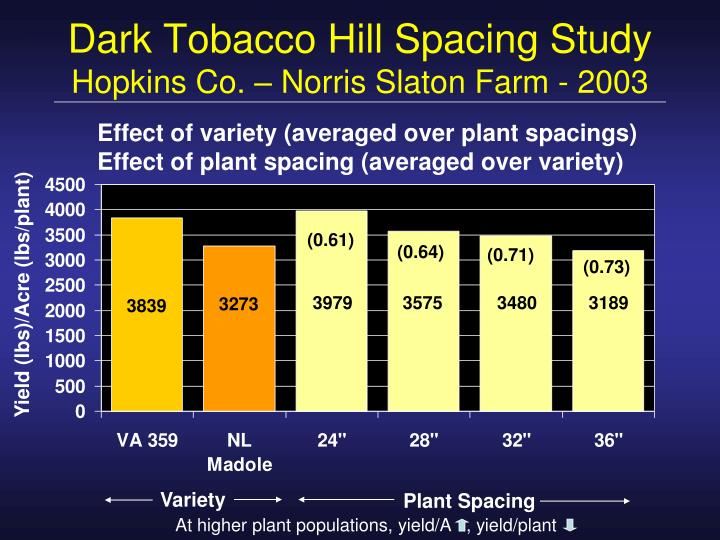 At higher plant populations, yield/A