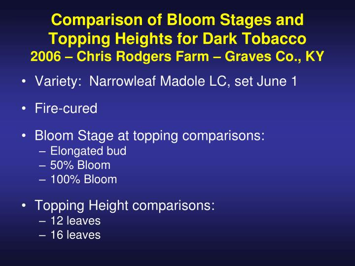 Comparison of Bloom Stages and Topping Heights for Dark Tobacco