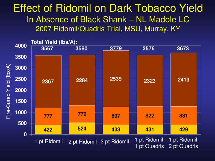 Effect of Ridomil on Dark Tobacco Yield