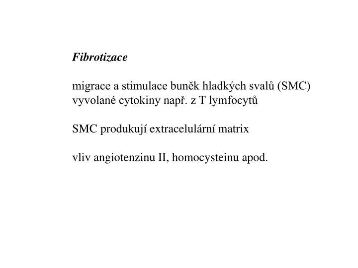 Fibrotizace