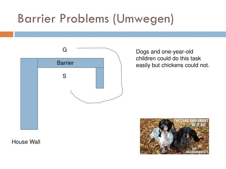 Barrier Problems (Umwegen)