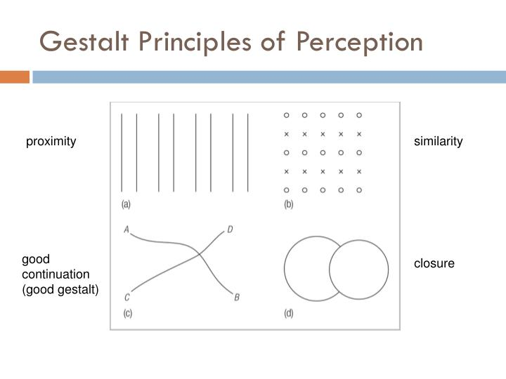 Gestalt Principles of Perception
