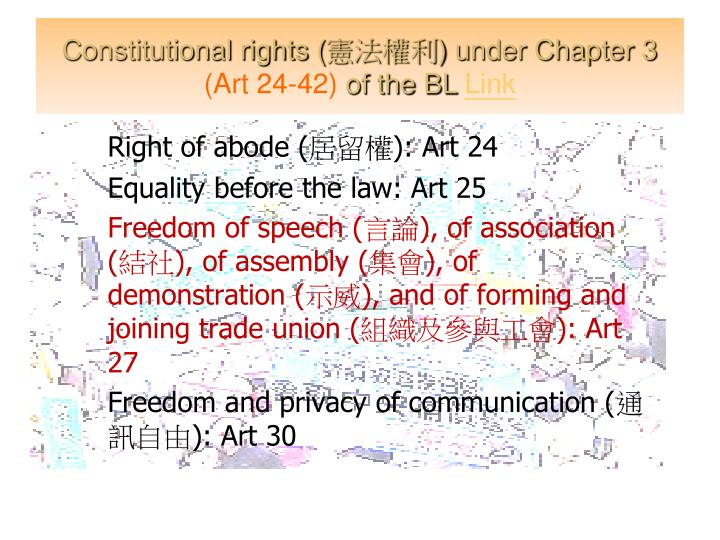 Constitutional rights (