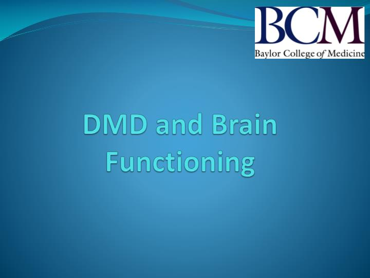 DMD and Brain Functioning
