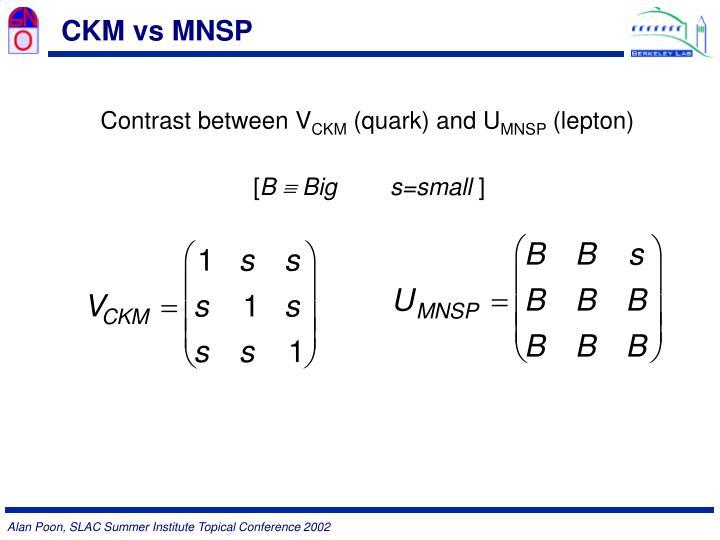 CKM vs MNSP