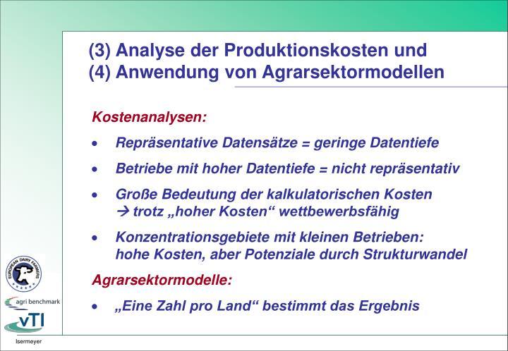 (3) Analyse der Produktionskosten und