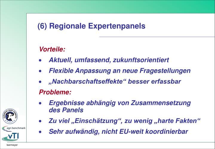 (6) Regionale Expertenpanels