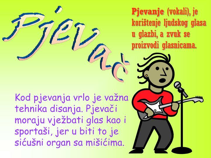 Pjevač