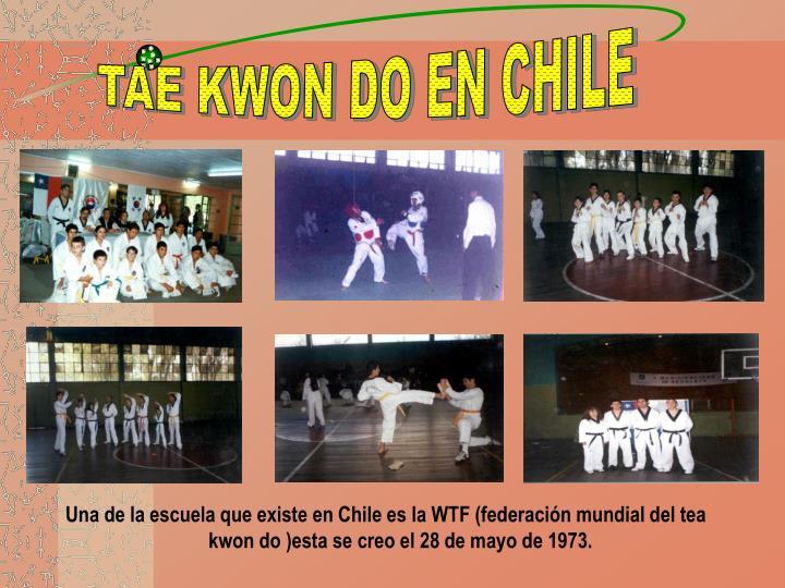 TAE KWON DO EN CHILE