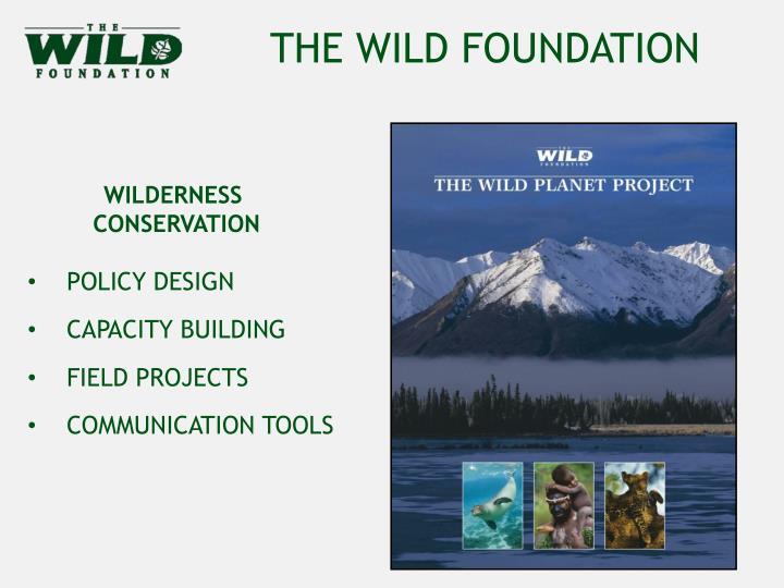 THE WILD FOUNDATION