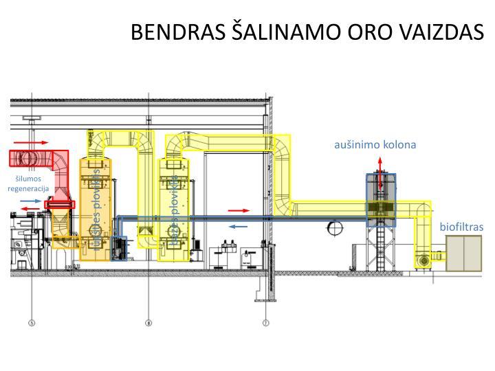 BENDRAS ŠALINAMO ORO VAIZDAS