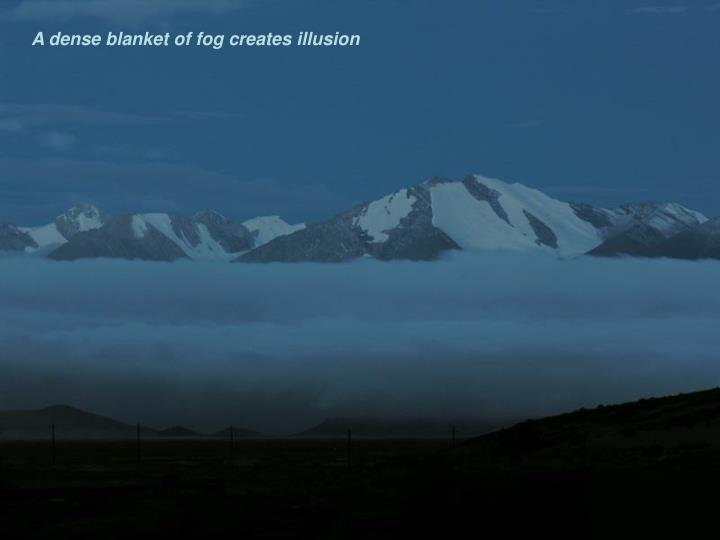 A dense blanket of fog creates illusion