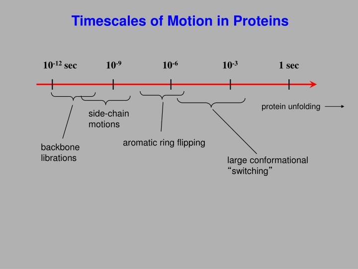 Timescales of Motion in Proteins